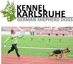 Kennel Karlsruhe | German Shepherd Dogs Ireland | GSD
